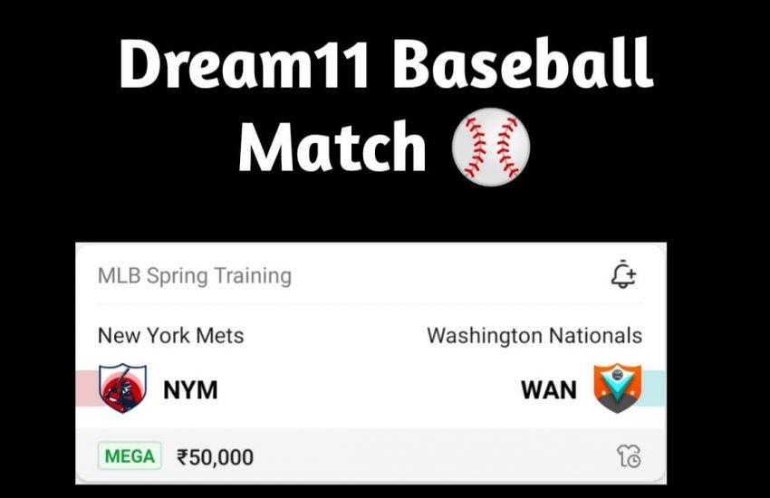 nym vs wan dream11