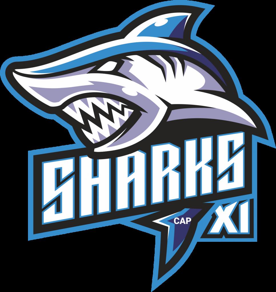 Sharks XI Player Stats